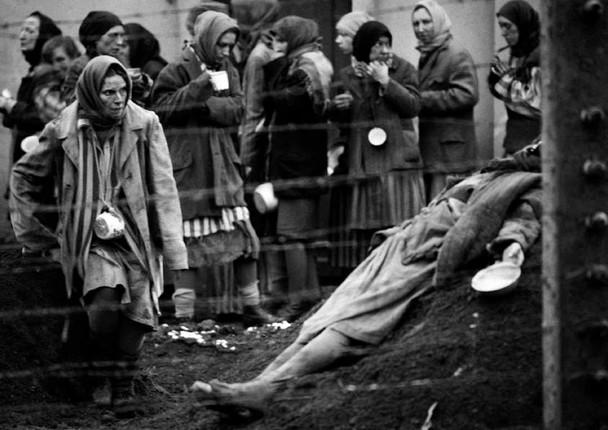 рай кончаловского скачать торрент - фото 10